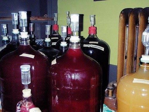 Вино на мезге из яблочного и виноградного жмыха — пошаговое приготовление