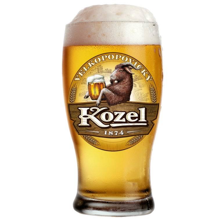 Пиво велкопоповицкий козел - история и современность + видео | наливали