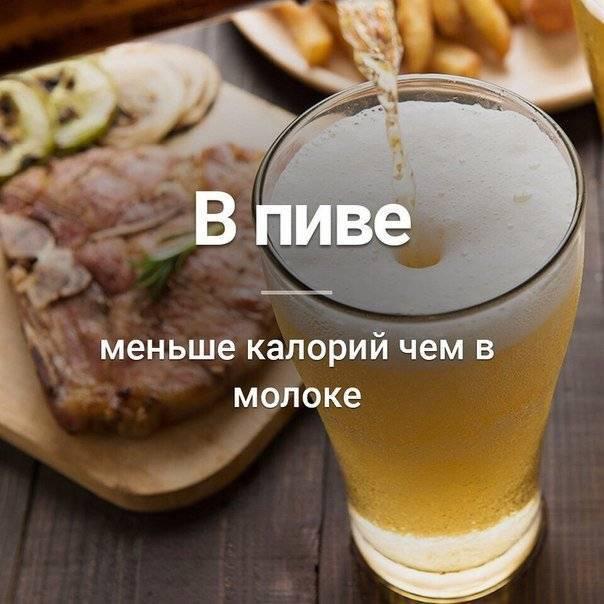 Как узнать сколько содержится калорий в пиве, пищевая ценность и калорийность разных сортов пива