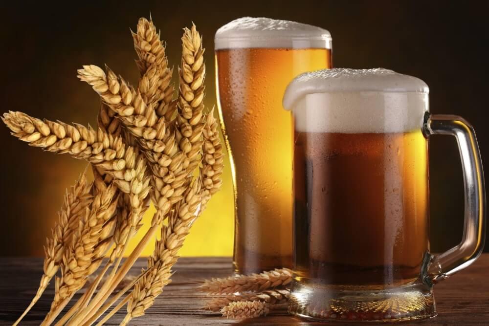Как варить пиво в домашних условиях: технология пивоварения, рецепты. простой классический рецепт и ингредиенты домашнего пива из хмеля и солода, зернового темного, из ячменя своими руками: секреты пивоварения