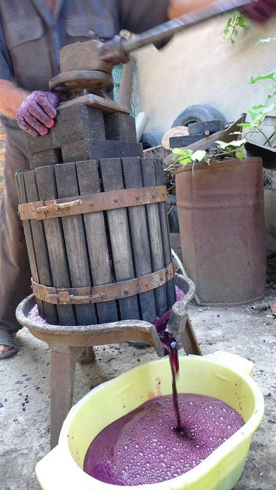 Делаем домашнее вино- методика и полная рекомендация