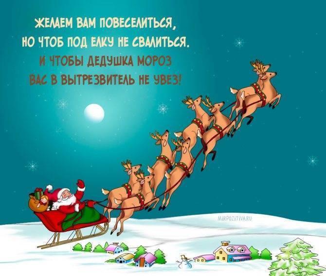 Шуточные  тосты женские — 12 поздравлений — stost.ru