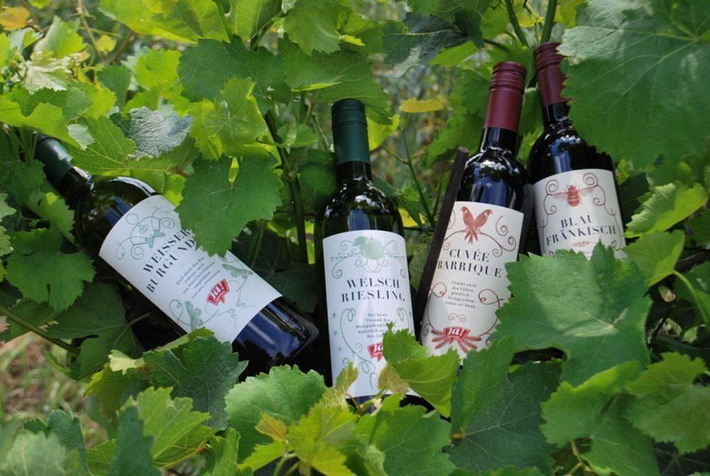 Биодинамическое вино. какой вкус и что делает вино биодинамическим