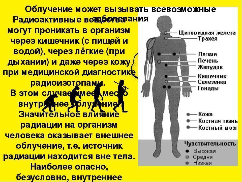 Может ли алкоголь защитить от радиации? алкоголь: защитник от радиации или смертоносный самозванец