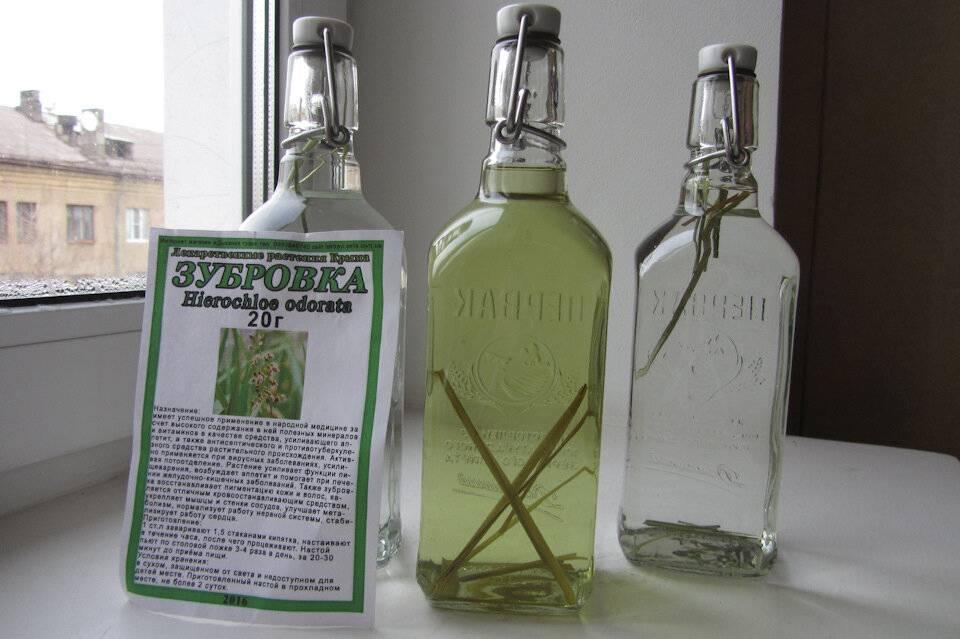 Рецепт домашней зубровки на водке