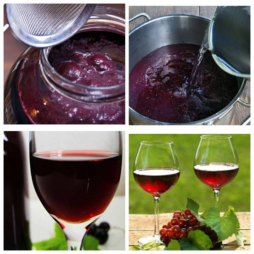 Вино из черного крыжовника