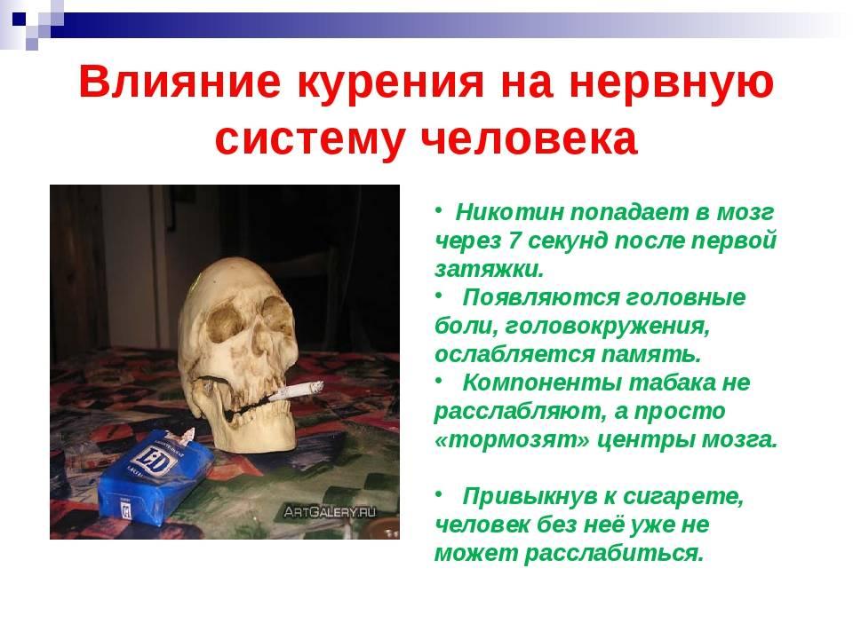 Влияние никотина на организм человека: вред и польза