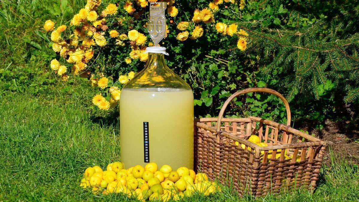 Медовое вино: рецепт приготовления в домашних условиях