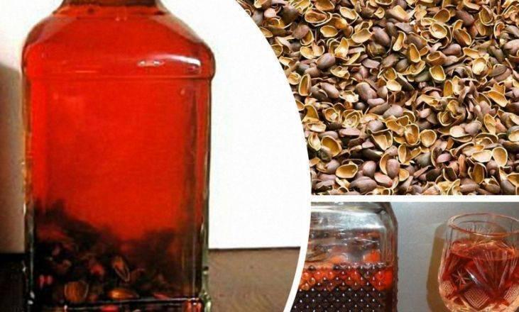 Настойка на кедровых орешках – кедровка на спирту, самогоне и водке