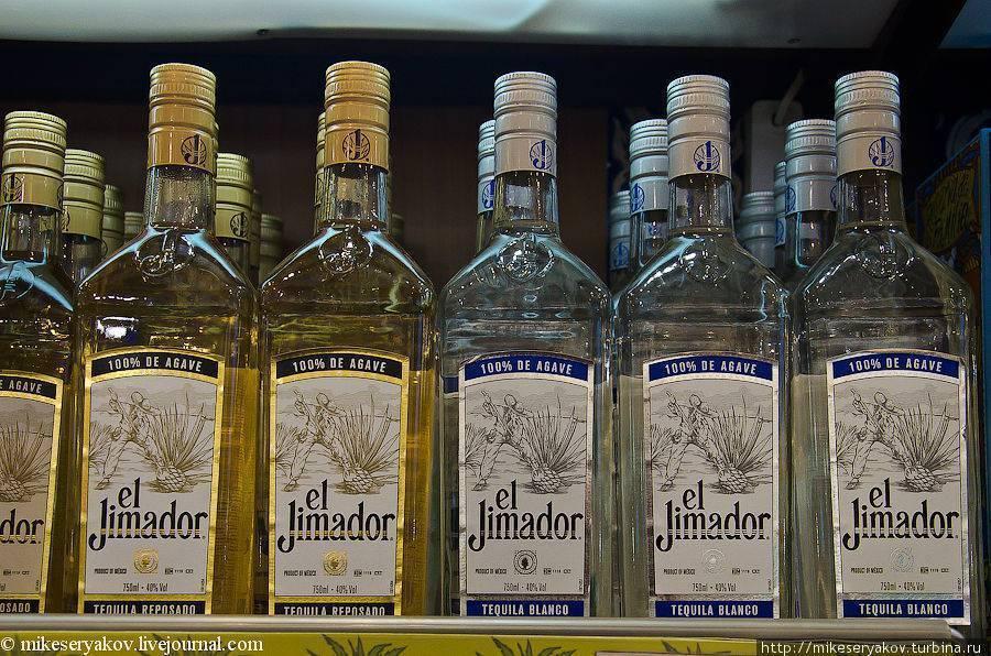 Как правильно пить текилу: мексиканский vs европейский способ + верные закуски