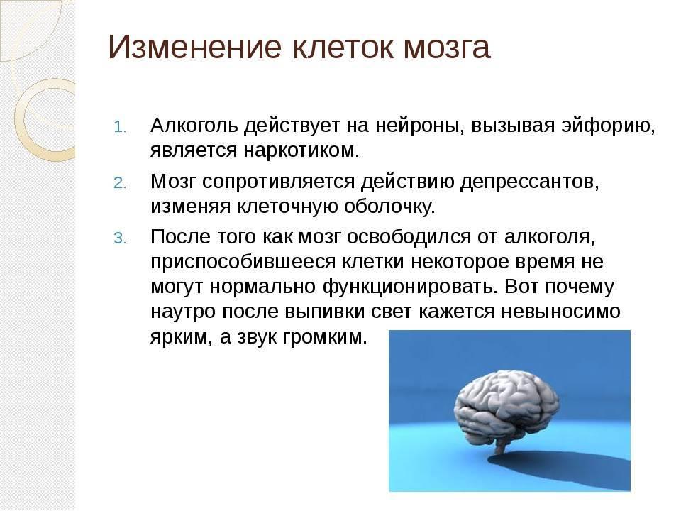 Влияние алкоголя на человеческий мозг
