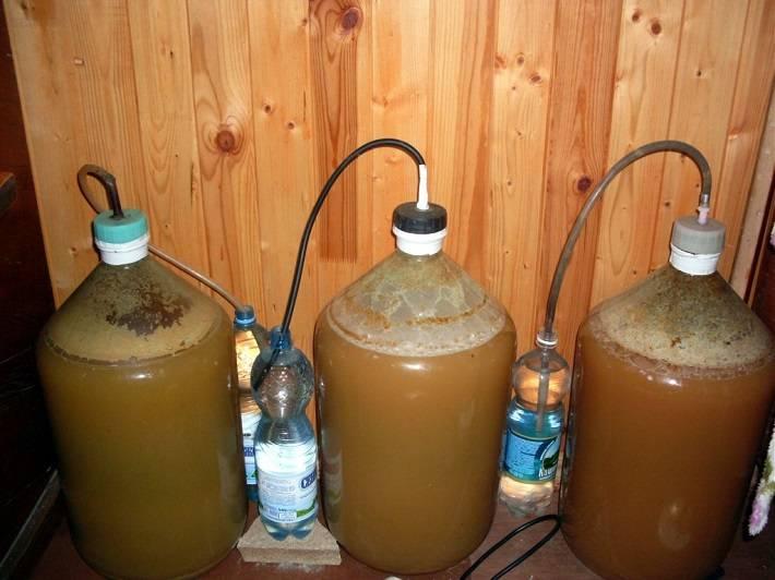 Как сделать брагу для питья: быстрый рецепт