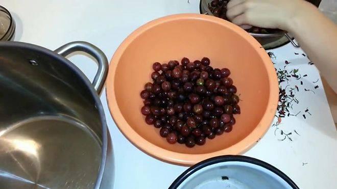 Настойка из крыжовника в домашних условиях простой рецепт. ликёр, вино и наливка из крыжовника.