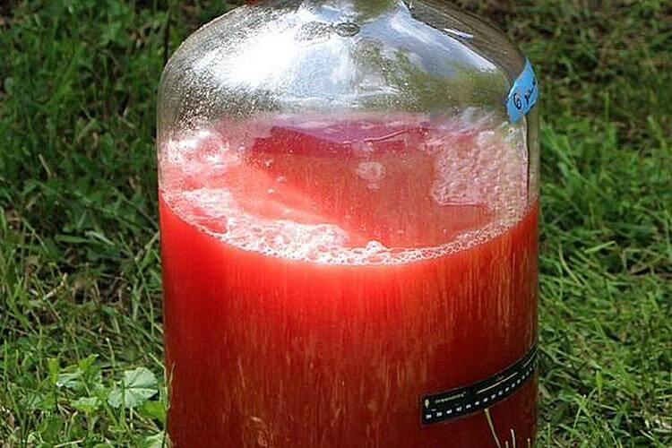 Готовим самогон из арбуза