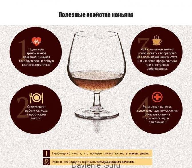 Польза и вред коньяка для здоровья организма человека: можно ли пить его в лечебных целях
