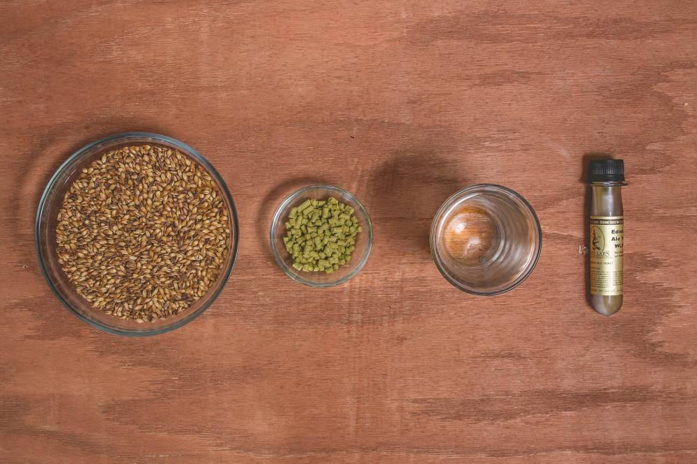 Как выбрать мини-пивоварню для дома и не сойти с ума или подробная инструкция для новичков