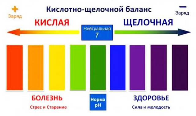 Водородный показатель (ph) некоторых распространенных продуктов питания. кислотность.