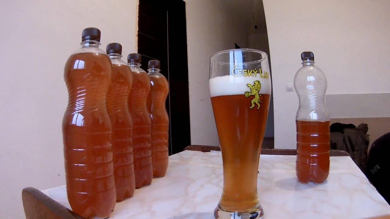 Рецепт жигулевского пива для домашней пивоварни. сколько градусов в жигулевском пиве?