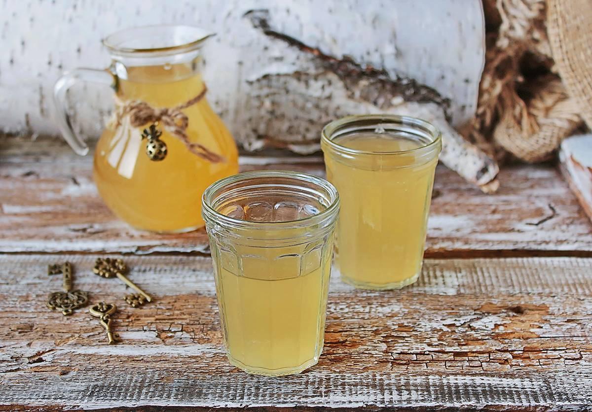 7 простых рецептов кваса из березового сока | дачная кухня (огород.ru)