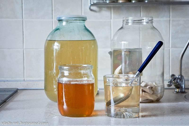 Как заготовить хрен на зиму в домашних условиях: 11 простых рецептов