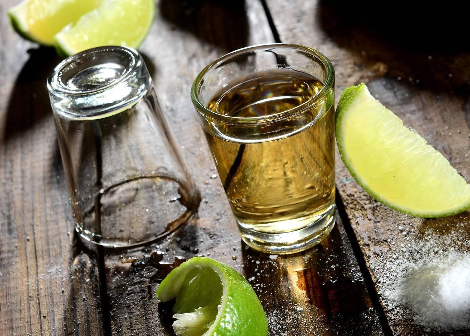 Как правильно пить текилу с солью 5 вариантов и 5 коктейлей с текилой