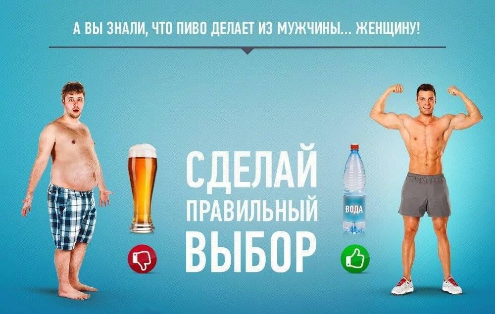 Есть ли женские гормоны в пиве?