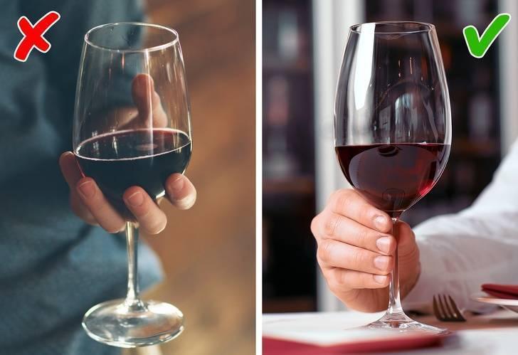 Как и в чем подавать вино: правила и температура подачи красных и белых вин