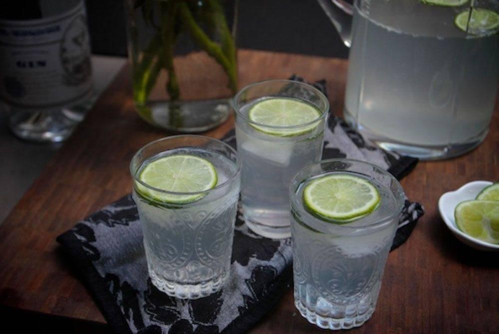Коктейли с джином в домашних условиях. простые рецепты с фото пошагово: 2-х компонентные, для женщин