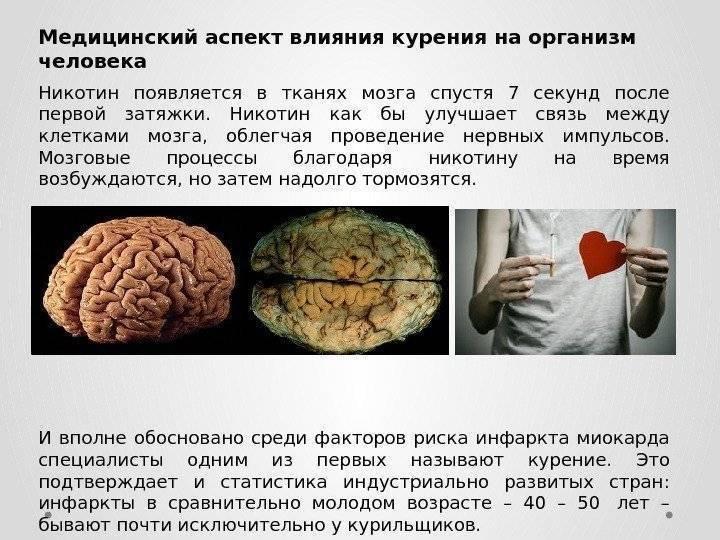 Как курение влияет на мозг: воздействие, последствие, регенерация