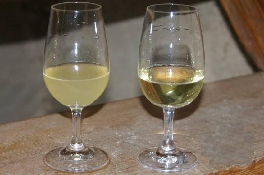 Способы осветления домашнего вина: бентонит и желатин