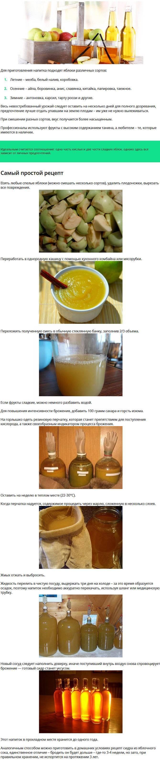 Изготовление вина по старинным рецептам (проверено мамой)