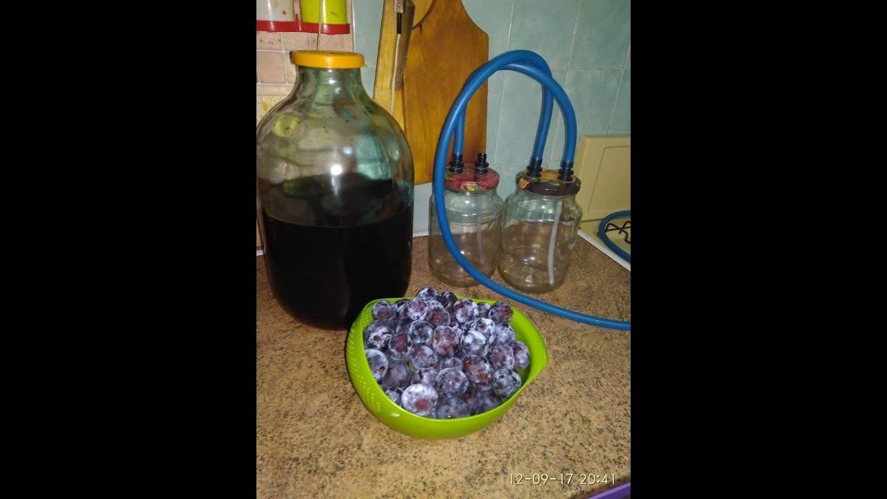 Самогон из домашнего вина