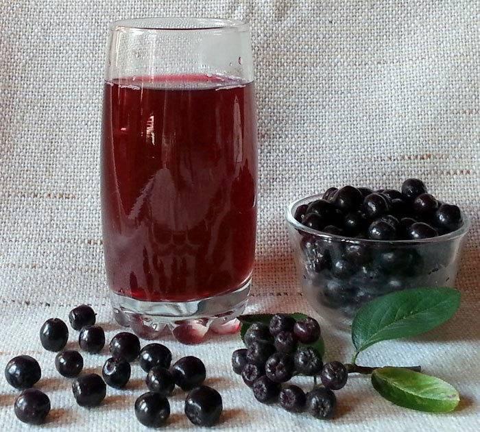 Лучшие рецепты вина из черноплодной рябины: к любому застолью хороши!
