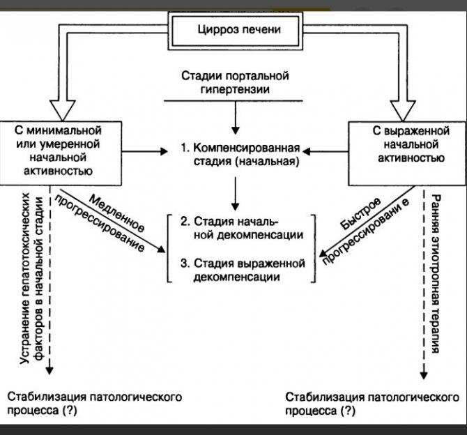 Компенсированный и декомпенсированный цирроз: в чём отличия