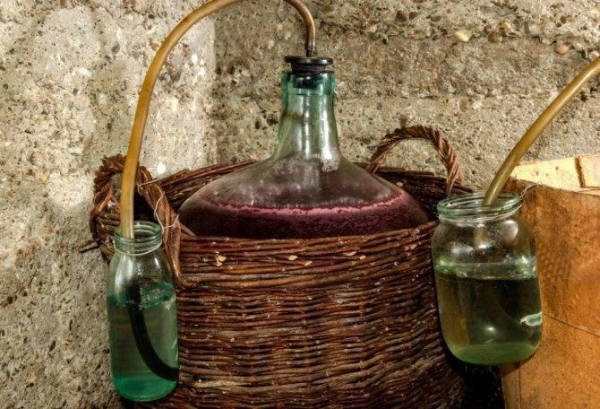 Вино из крыжовника в домашних условиях рецепт
