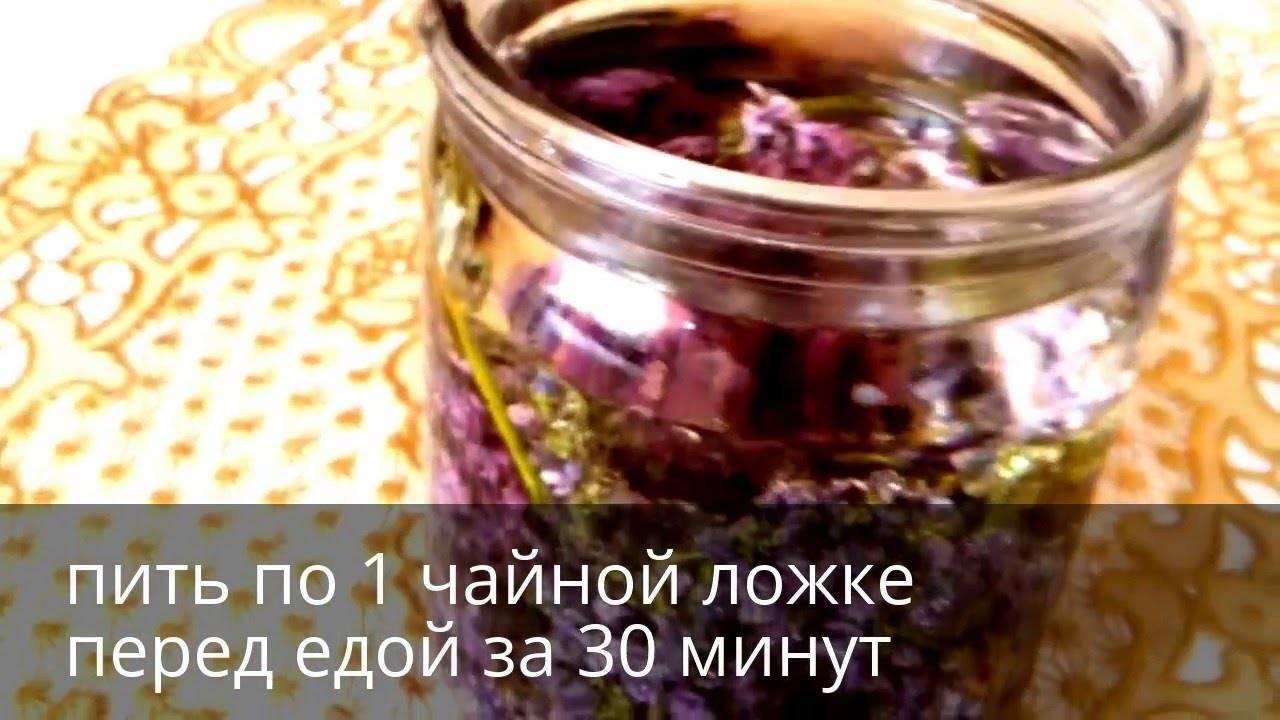 Настойка сирени на водке: применение для суставов, при болях, рецепты, отзывы