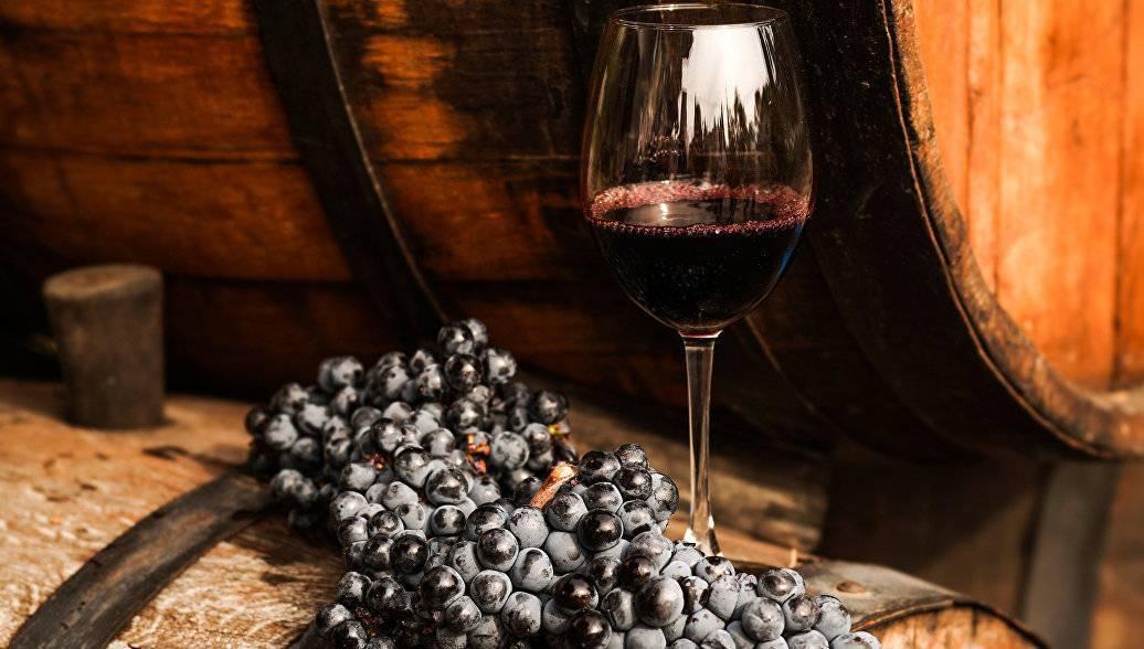 История виноградарства и виноделия во франции