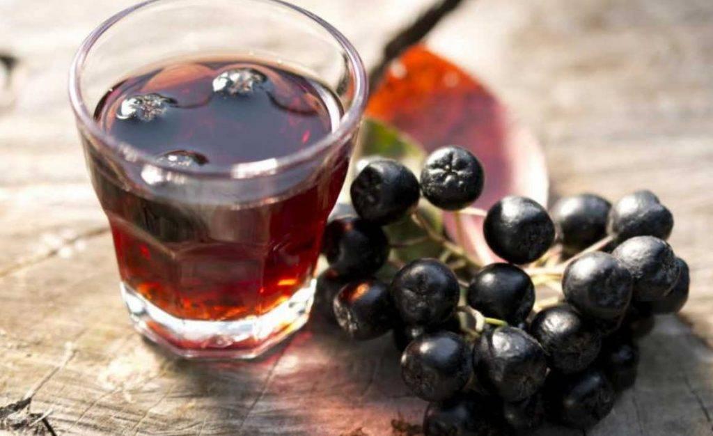 Вино из черноплодной рябины с дрожжами в домашних условиях