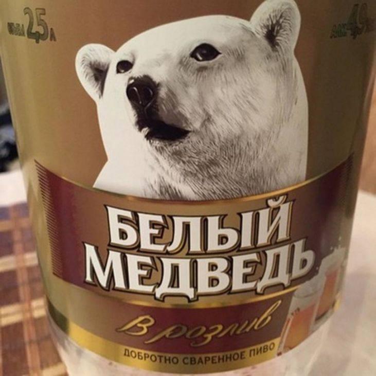 Пиво белый медведь – 85 фото, полезные свойства и характеристика напитка