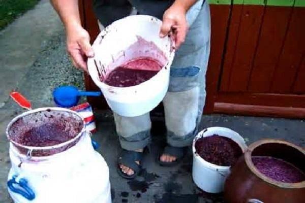 Брожение домашнего вина