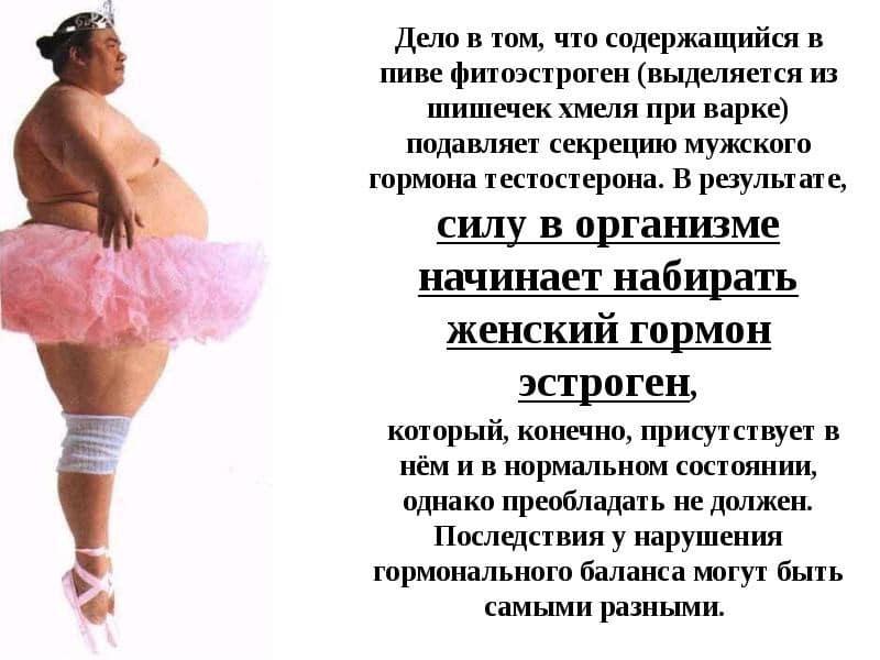 Как есть и не толстеть? список продуктов, от которых можно поправиться и похудеть | mixfacts.ru | яндекс дзен