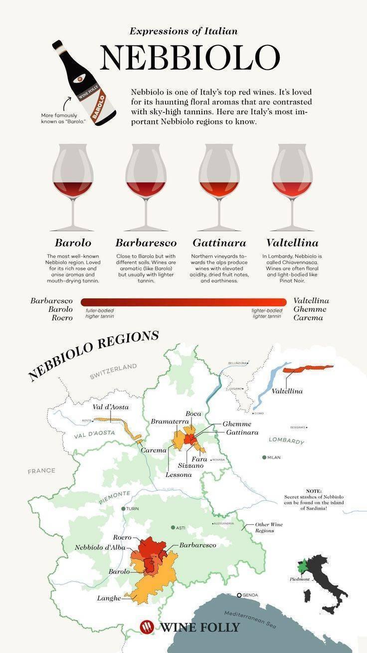 Белое и красное итальянское вино