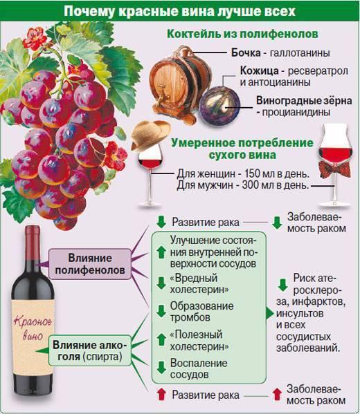Какую пользу и какой вред таит в себе домашнее вино