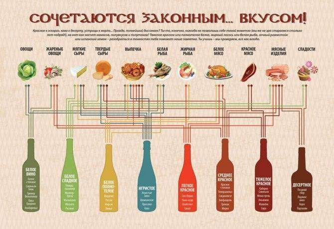 Как подобрать алкоголь к ужину: сочетание красных вин с блюдами / готовим.ру