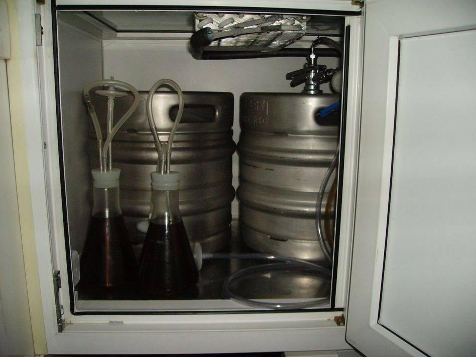 Срок хранения разливного пива в пластиковой бутылке: выбор температуры и места