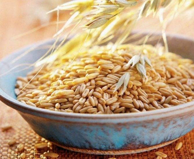 Рецепты самогона из пшеницы в домашних условиях