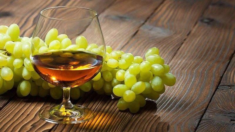 Как сделать коньяк из винограда: технология изготовления, рецепт, рекомендуемые сорта