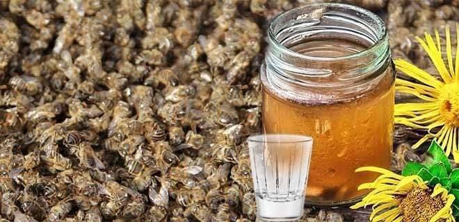 Настойка пчелиного подмора – применение, лечебные свойства, рецепты приготовления