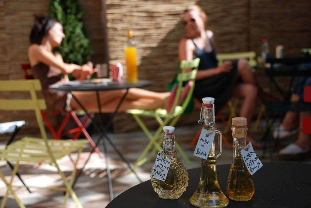 Турецкая водка раки — как выбрать и правильно пить