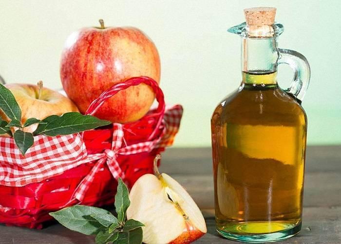 Шикарные рецепты яблочной настойки на самогоне – нельзя не попробовать
